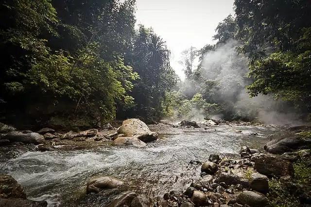 Gunung Leuser National Park - Indonesia