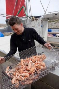 Seafood Safari - Svezia Ovest