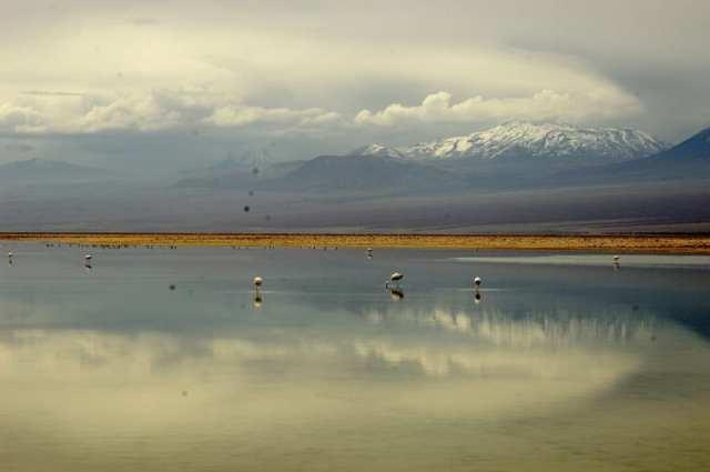 Salar de Atacama - Cile