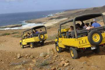 Aruba safari
