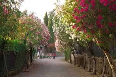 Sirmione - Lago di Garda