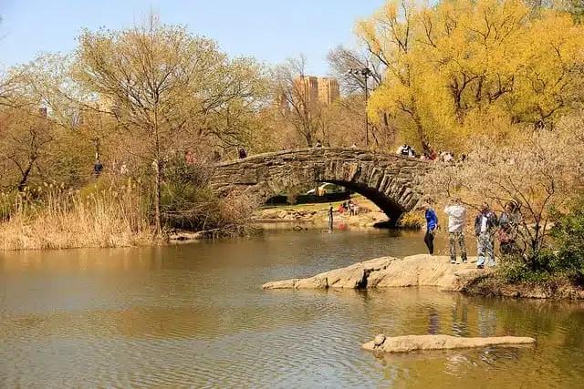 Central Park_NYC_Michela Simoncini