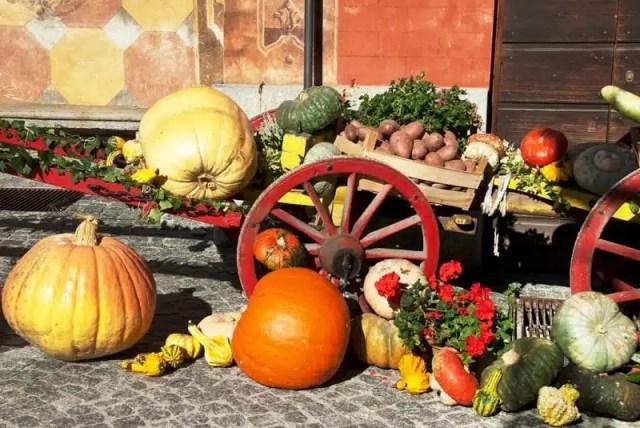 Fuori di Zucca - Santa Maria Maggiore, Piemonte