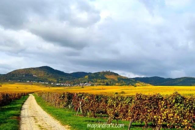 Alsazia , Francia