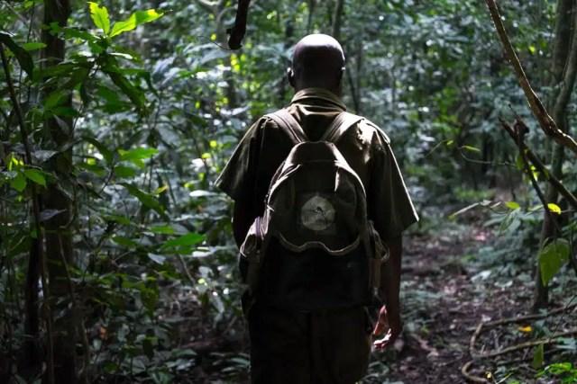 Foresta di Budongo - Uganda