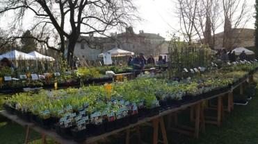 Il Friuli e Strassoldo in primavera