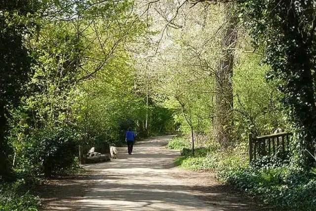 Hampstead Heath - Londra, UK