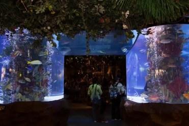 Disney Spring - Orlando, Florida, USA