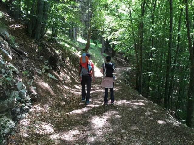 Sentiero dell'immaginario - Alpe Cimbra in famiglia