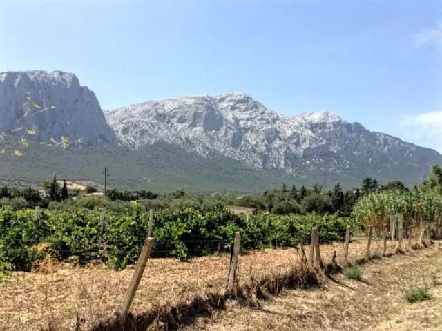 vista-del-supramonte-da-oliena_frency-motta