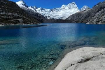 Foto Mono Andes