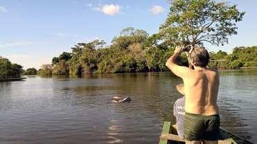 10 Delfini rosa (2) a