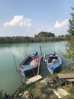 laguna 1