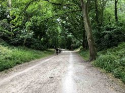 Pista ciclabilio presso Woluwe Parc