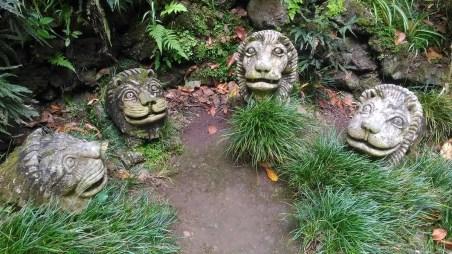 jardin tripical 8