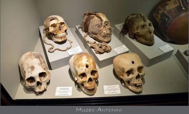 Il museo Antonini peru