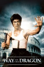 Bruce Lee: The Way of the Dragon (1972)