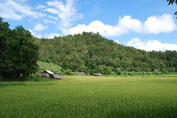 Trek Thailande