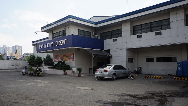 Que faire à Manille - Combats de coqs