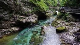 vingtar slovénie