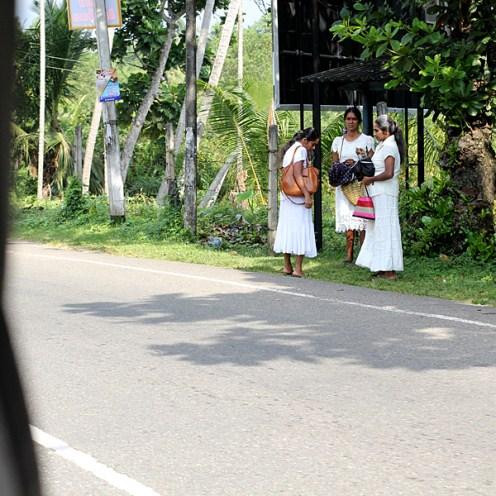 03Jan16Srilanka5