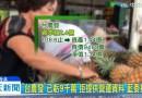 (影)「台農發」已虧9千萬 拒提供營運資料 藍委批傲慢