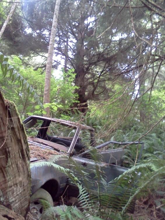 Elk River old car