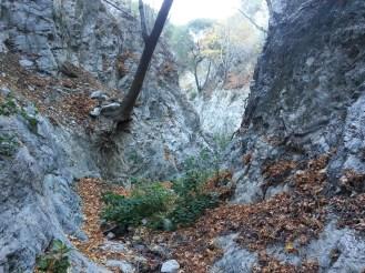 Pickens Canyon 01