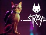 Stray gameplay