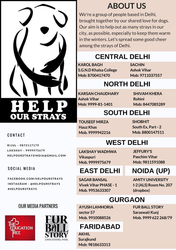 Help Our Strays Contact Info