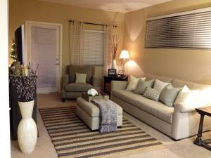 Tiny Living Room Ideas Elegant Living Room Small Living Rooms Small Spaces Decorating