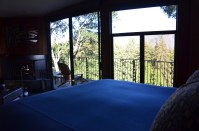 View from Treehouse