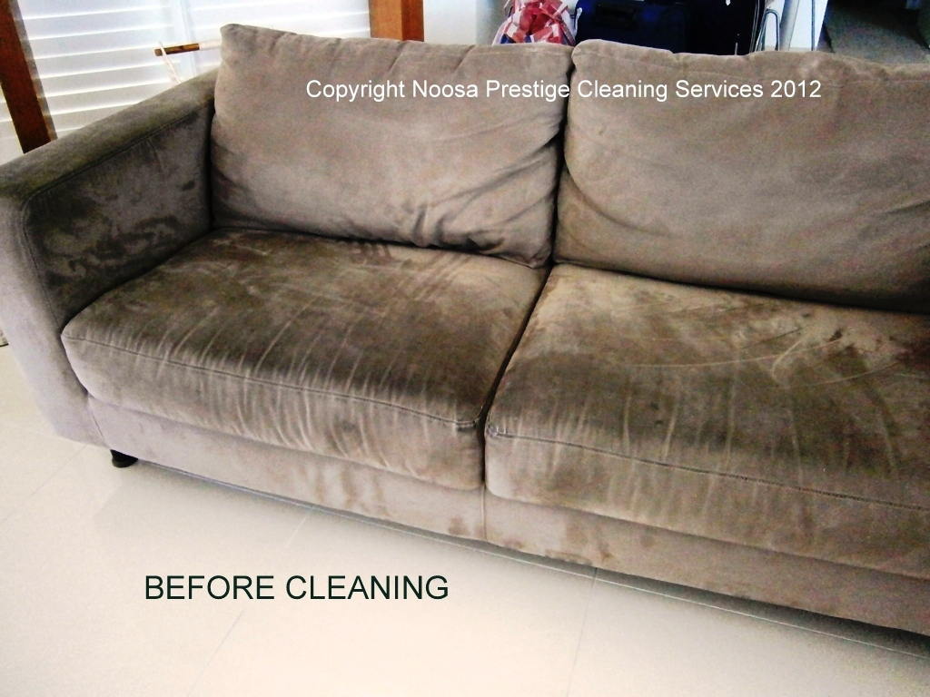 steam clean leather sofa how to repair small tear in upholstery cleaning noosaprestige