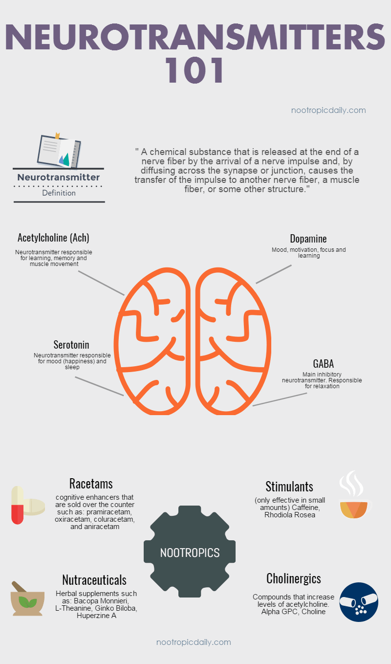 Nootropics and Neurotransmitters Infographic