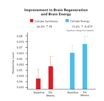 Results of Mind Lab Pro