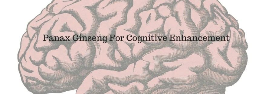 Panax Ginseng For Cognitive Enhancement