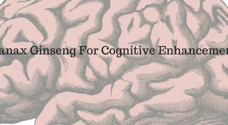 Panax Ginseng For Cognitive Enhancement