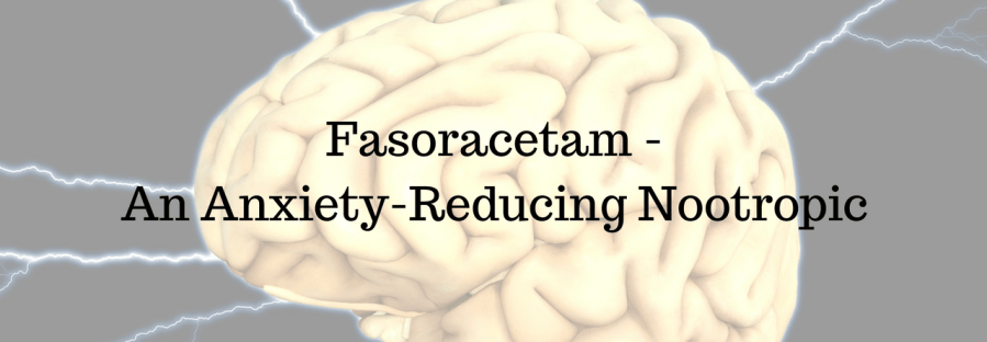 Fasoracetam - An Anxiety-Reducing Nootropic