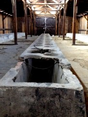 Bathrooms and showers at Birkenau