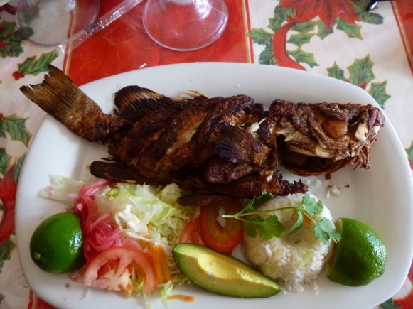Fish served Mayan style -head 'n all (delicious!) Playa del Carmen