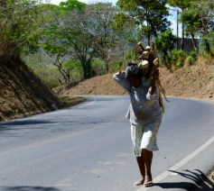 Wood gatherer north of Matagalpa