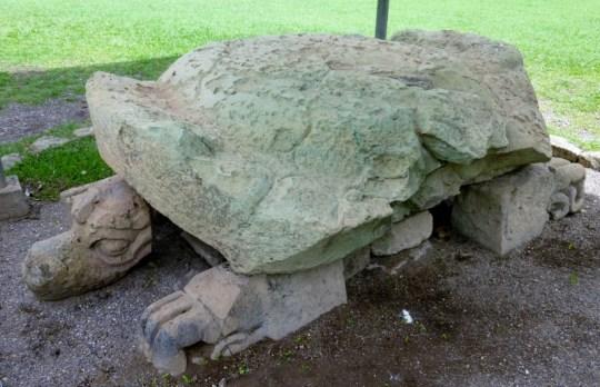 Turtle on the Grand Plaza - Copan Mayan Ruins