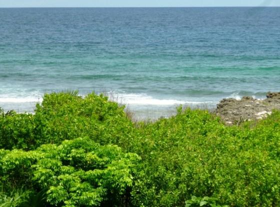 """Coast on south of island - the """"Iron Shore"""" - Utila"""