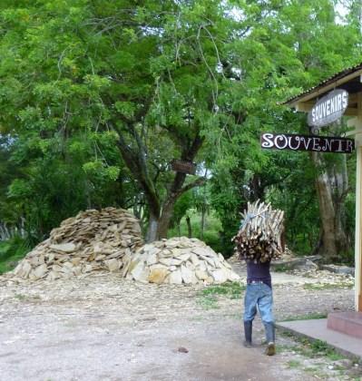 Hauling wood - Copan,Honduras