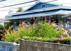 A floral yard - Utila