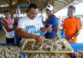 shrimp and prawns - Manta fish market