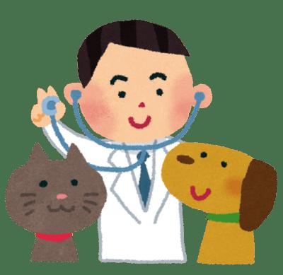猫システムトイレは最強!獣医師が1番おすすめする理由と特徴や種類を解説