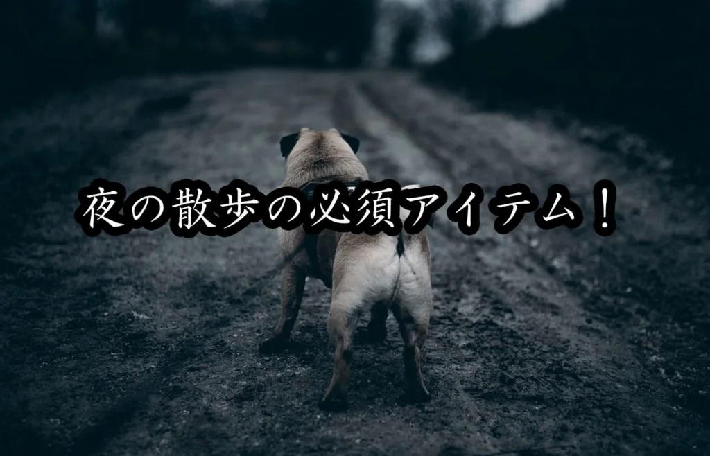 夜の犬の散歩の必須アイテム