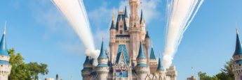 Disney World Hotels Guide - Learn About Your Options for Budget Hotels, Luxury Resorts, and More 7