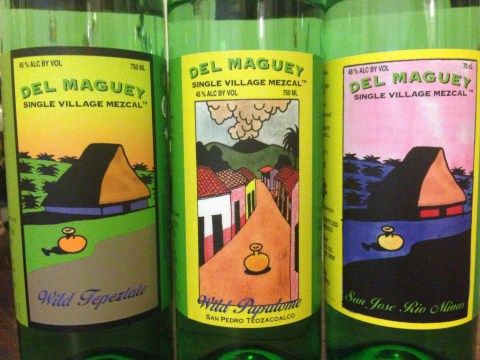 Supremely rare and outstanding tequila from Jacques Bezuidenhout.
